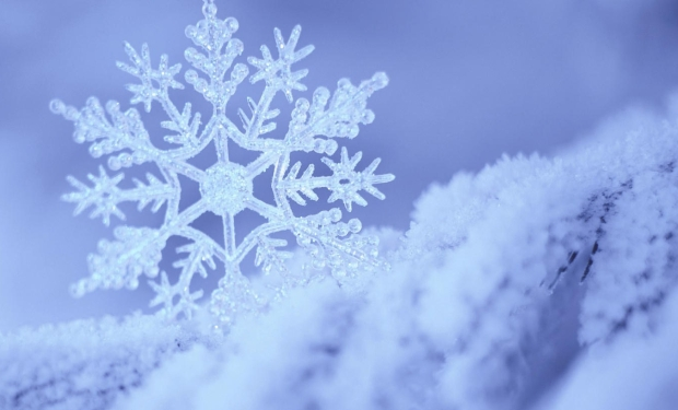 vida-como-de-nieve.jpg